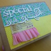 Special Book